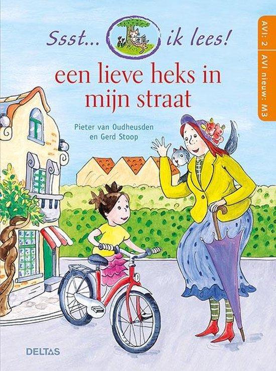 Pieter van Oudheusden en Gerd Stoop - Een lieve heks in mijn straat